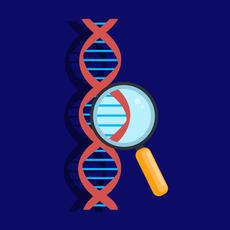 Молекулярная генетика в онкологии