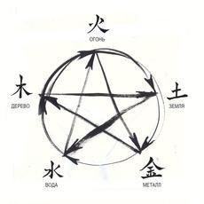 Введение в Традиционную китайскую медицину (ТКМ)